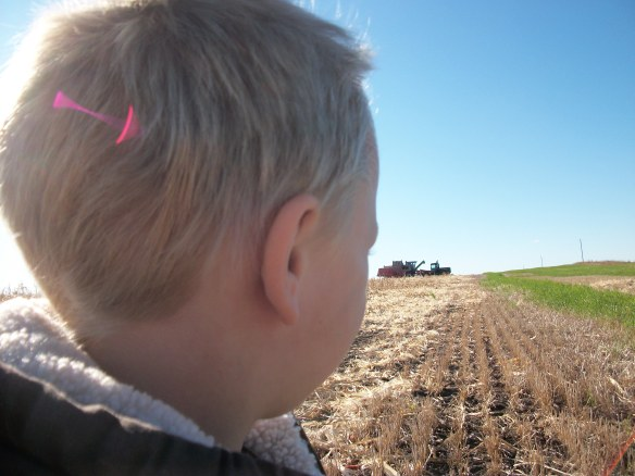 Waiting his turn...his dad is in the tractor, his grandpa is in the combine. Is his future in jeopardy?
