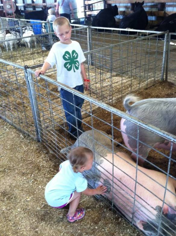 A boy and his pigs. EJ is our true-blue farmer.
